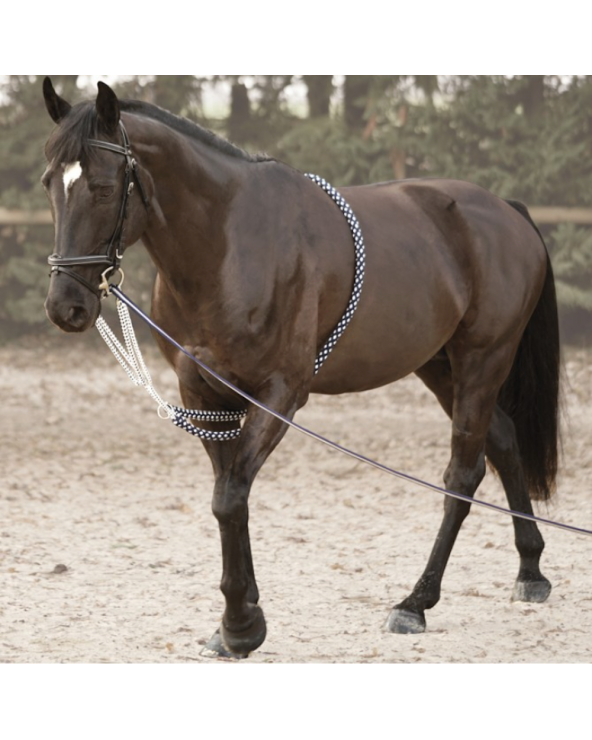 Enrênement SOFT ROPE canter 105701 Canter Enrênements
