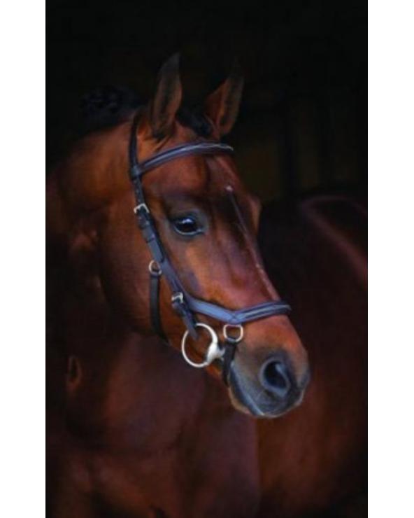 Bridon Rambo Micklem - Bridon Deluxe Competition SBAB5F Horseware Bridons