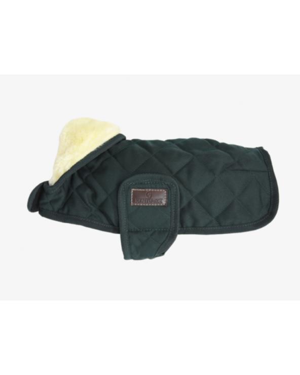 Manteau pour chien original - Couleur vert foncé 52104 Kentucky Chien