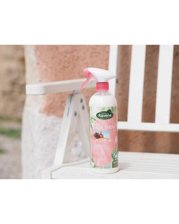 Easy Shine Spray 750ml Spray750ML RAVENE démêlant