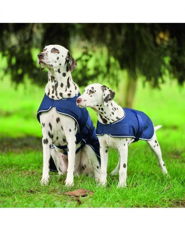 Couverture de pluie imperméable 80020005 Waldhausen Manteaux pour chien